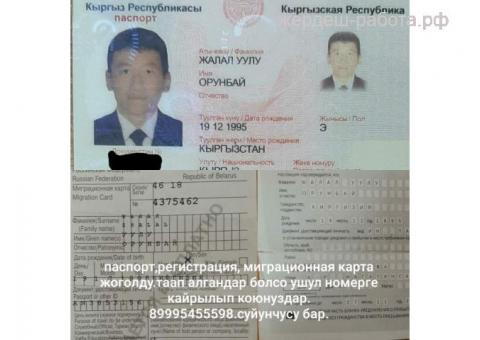 Паспорт жоголду